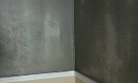 壁に薄塗りかけて終了